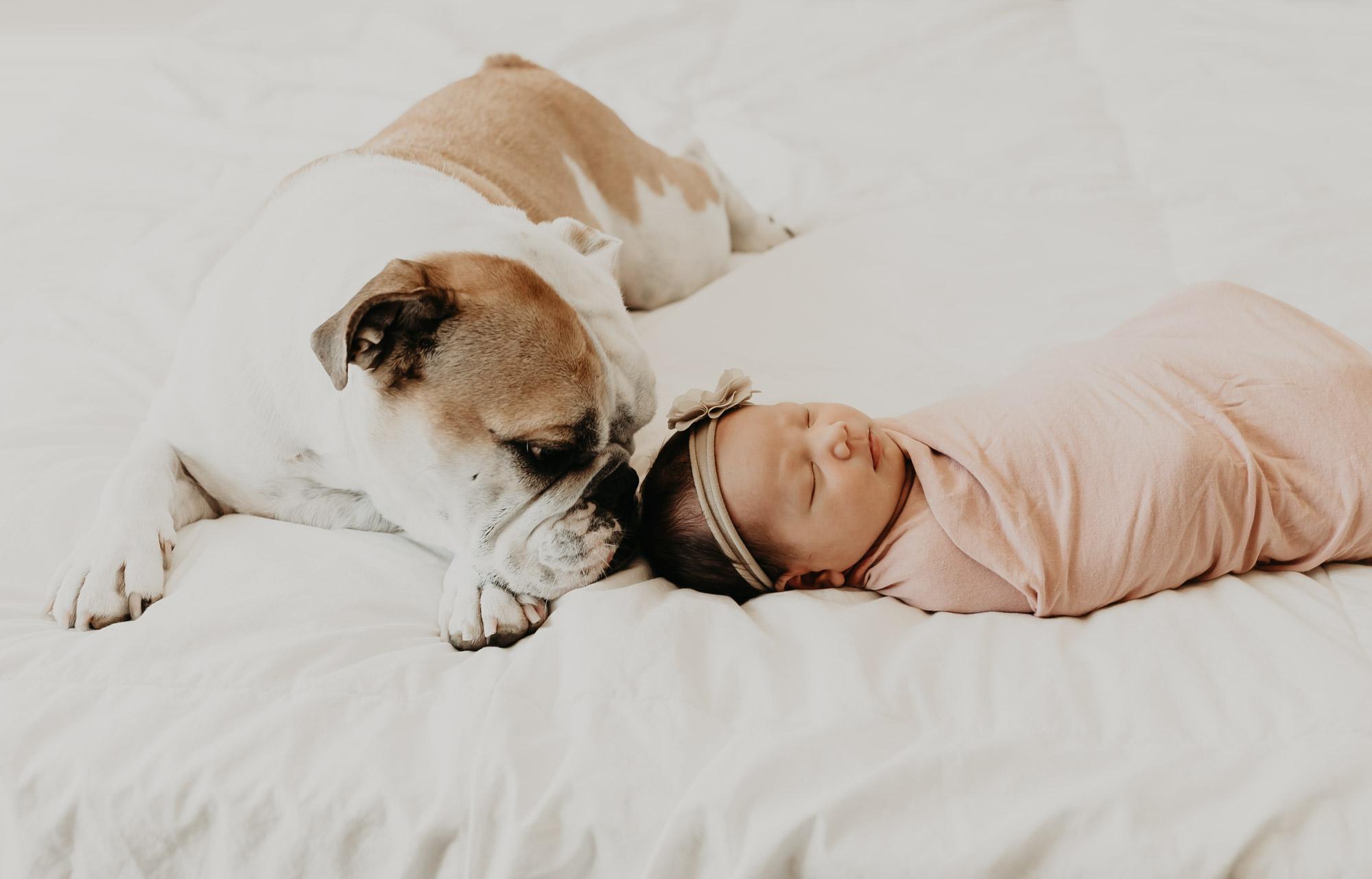 baby photographer san francisco