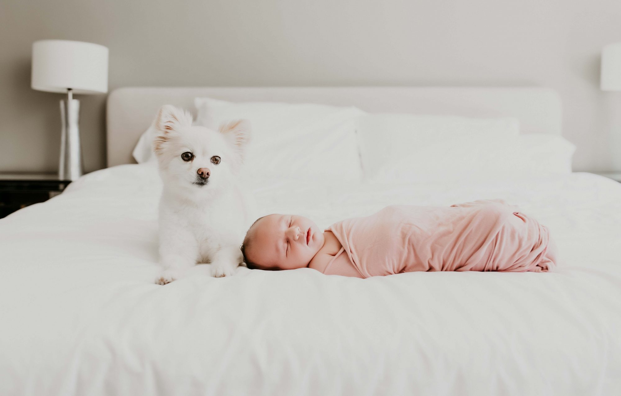 Newborn Photographer in San Francisco - 21